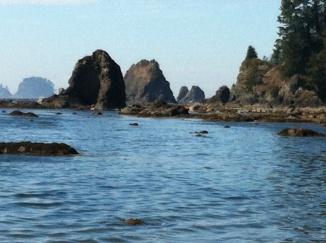 8ozette beach water